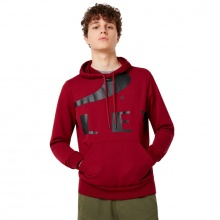 Oakley Big Logo Ellipse Hoodie Rasberry